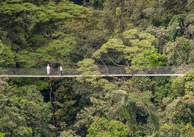 Arenal Hanging Bridges 3