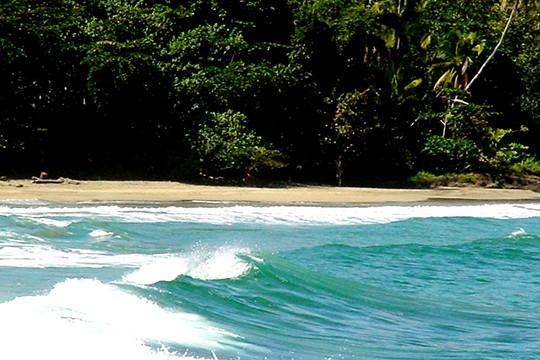 cahuita-04 Shore Excursions Caribbean