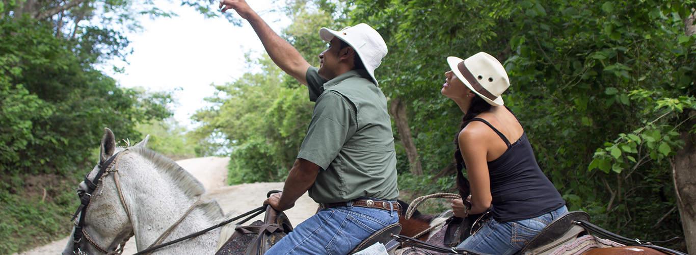 headers-mice-tours-guanacaste TAM NEWS