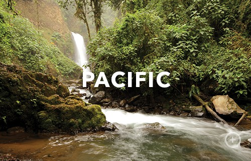 pacific Shore Excursions