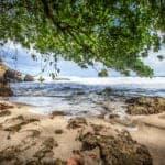 161114LimonBeach-150x150 Sierpe Mangrove Tour