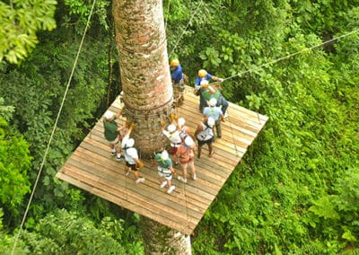 canopy-3-400x284 Tour Options Los Sueños Marriott