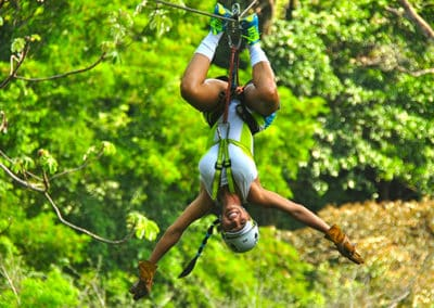 canopy-4-400x284 Tour Options Los Sueños Marriott